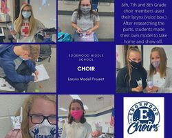 Choir Larynx Model Project